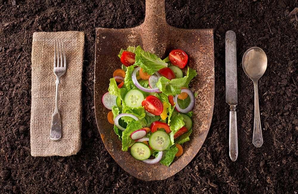 Fresh produce sustainable eating