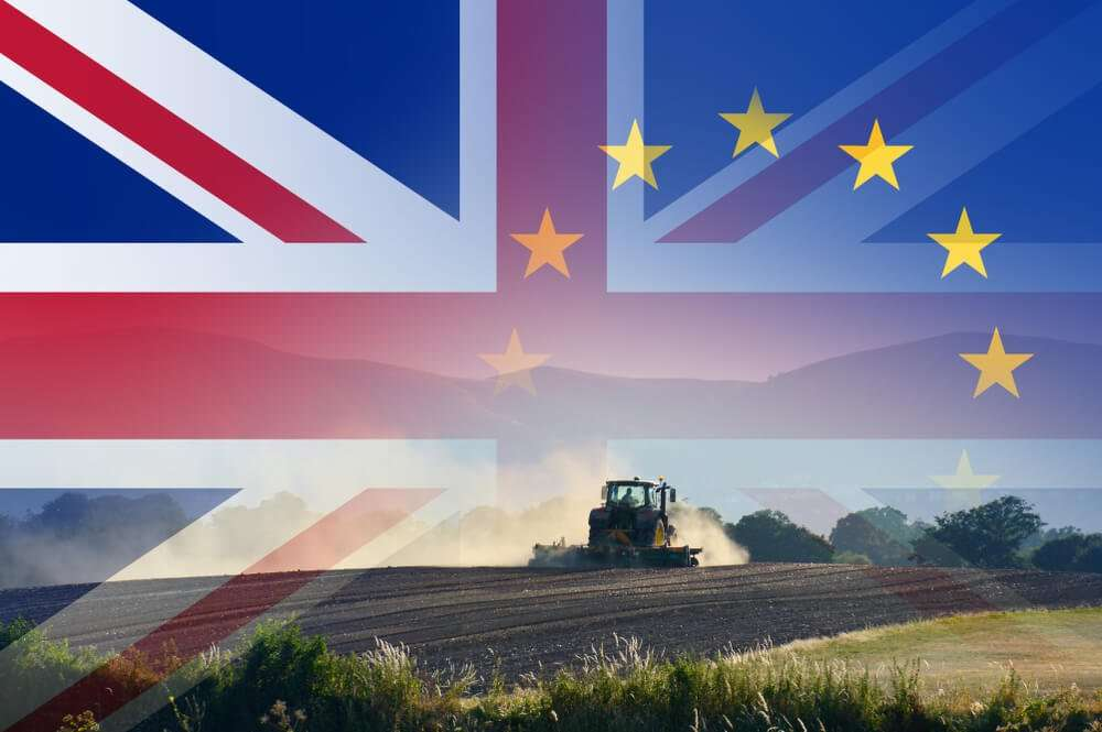 Brexit – the latest news and how caterers can prepare