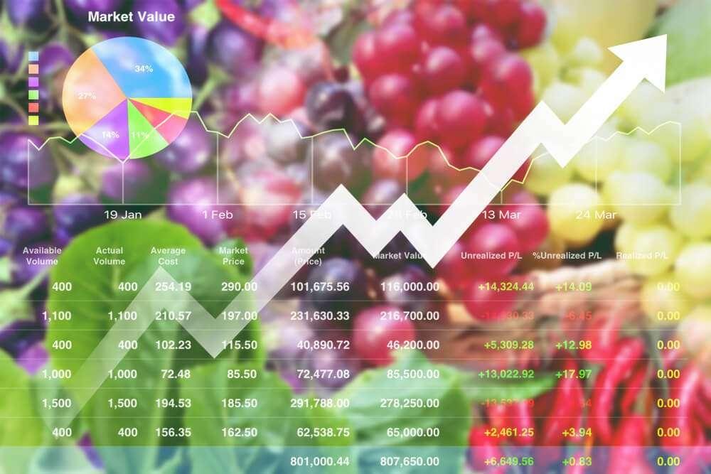 Food Market Analysis