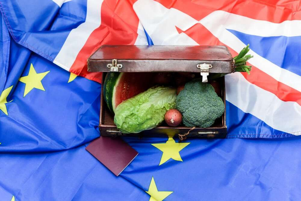 Brexit UK trade negotiations impact on food & drink